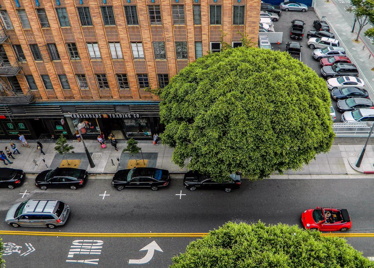 On-Street Parking Telecom